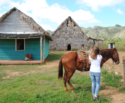 Excursion a cheval Vinales